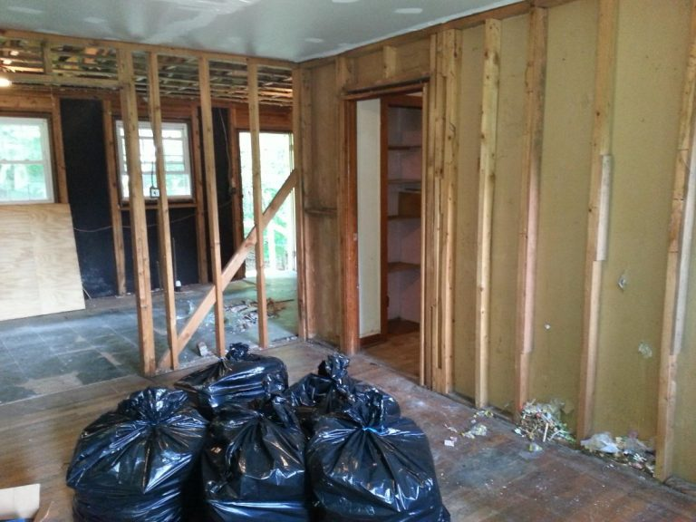 Living room view during cleanup before renovating the house
