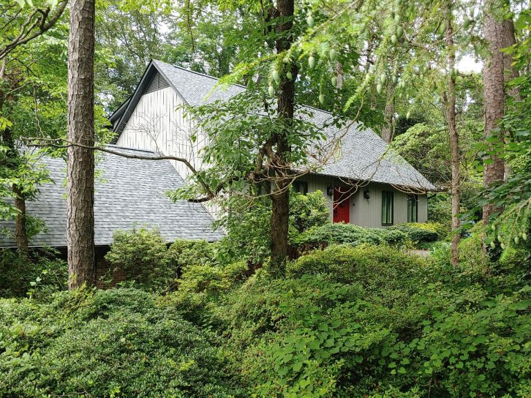 An overview of an asphalt shingle rooftop in the middle of the forest